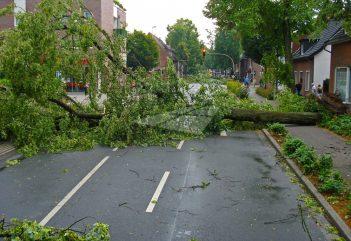Stormachtig idee: een stormwerende kunststof voordeur