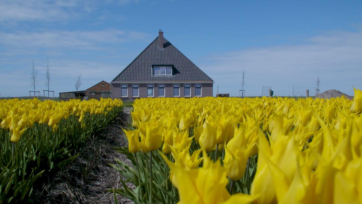 Select Windows Kunststof kozijnen voor elke stijl woning - Renovatie boerderij kunststof kozijnen 't Zand